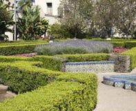 Struiken bij het Park van Balboa royalty-vrije stock foto