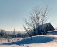 Struiken en bomen onder de sneeuw Stock Foto's