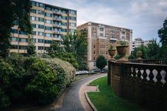 Struiken en gang bij Hoogste Heuvelpark, in Washington, gelijkstroom Royalty-vrije Stock Foto