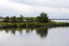 Struikenreflectin in nog water van Myvatn-meer, IJsland royalty-vrije stock foto