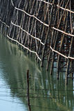 struktur av bron Arkivfoto