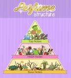 Struktur av den infographic pyramidaffischen för arom royaltyfri illustrationer