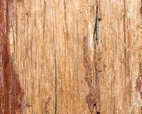 Struktur av ett gammalt planerat bräde med spår av målarfärg och smuts Trä med defekter arkivfoto