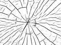 Struktur av sprickor av trä Royaltyfri Foto