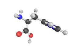 struktur 3d av Histidine som används i biosynthesisen av proteiner Arkivfoton