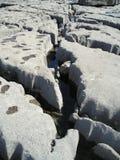 Struktur der Kalksteinküste, Doolin, Irland, EU. lizenzfreies stockbild