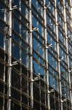 struktur för byggnadsaffärsyttersida Royaltyfri Bild