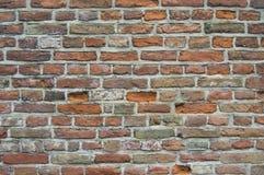 Struktur för stentegelstenvägg Arkivfoto