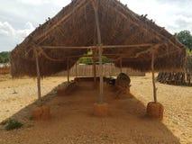 Struktur gemacht vom Holz und Stroh oder Heu Stockbilder
