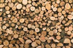 Struktura drzewo w sekci Surowi materiały dla ogrzewać budynek mieszkalny Zdjęcia Stock