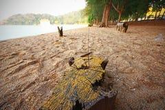 struktura morza tło piasku Zdjęcie Stock