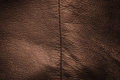 struktura prawdziwej skóry. Zdjęcia Stock