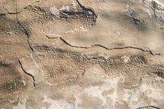 struktura rock Fotografia Stock