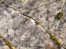 struktura rock Obraz Stock
