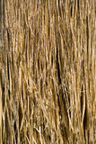 struktura słomiana Obraz Stock