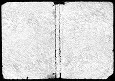 struktura skórzanej white Obraz Royalty Free
