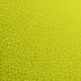 struktura zielonych liści Obrazy Royalty Free