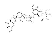 strukturell formelstevioside Royaltyfria Foton