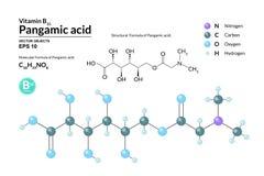 Strukturell kemisk molekylär formel och modell av Pangamic syra Atomer föreställs som sfärer med att kodifiera för färg vektor illustrationer