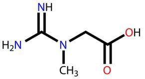 Strukturelle Formel des Kreatins Stockbild