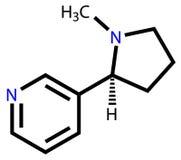 Strukturelle Formel des Nikotins Stockbild