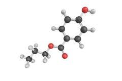 strukturen 3d av Propylparaben, enpropyl ester av p-hydroxyben Arkivbilder