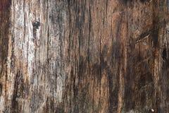 Strukturierte Holzoberfläche, ausführlicher Hintergrund Lizenzfreies Stockfoto