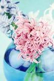 Strukturierte rosafarbene Hyazinthe Stockbild