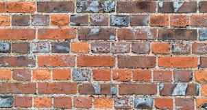 Strukturierte rote Backsteinmauer stockfotografie