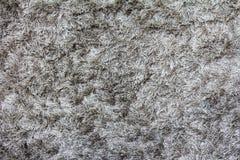 Strukturierter Hintergrund des grauen Teppichs Lizenzfreies Stockbild