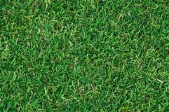 Strukturierter Hintergrund des Musters des grünen Grases des Fußballplatzes Lizenzfreie Stockfotos