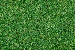 Strukturierter Hintergrund des Musters des grünen Grases des Fußballplatzes Lizenzfreies Stockfoto
