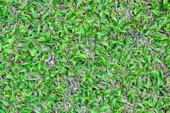 Strukturierter Hintergrund des Musters des grünen Grases des Fußballplatzes Stockbilder