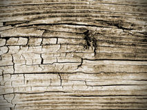 Strukturierter Hintergrund des verwitterten Weinlese-hölzernen Planken-Boden-Scheunen-Schreibtisches Stockbild