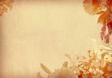 strukturiertes altes Papier der Blume Stockbilder