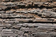 Strukturiertes Holz Stockbild