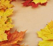 Strukturiertes Papier bedeckt mit Blättern Stockfotografie