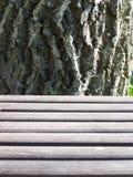 Strukturkontrast Stockbilder