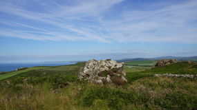 Strumble głowa, Pembrokeshire wybrzeża linia Obraz Royalty Free