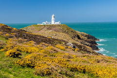 Strumble Head Lighthouse Wales. Strumble Head and the 1908 Lighthouse on the Pembrokeshire coast of Wales UK Europe Stock Image