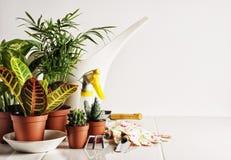 Strumenti da preoccuparsi per le piante in vaso fotografie stock libere da diritti