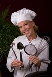 Strumenti del cuoco unico Immagini Stock