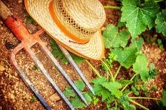 Strumenti dell'agricoltore nel giardino Fotografia Stock Libera da Diritti