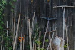 Strumenti dell'azienda agricola su un fondo di legno Fotografia Stock Libera da Diritti