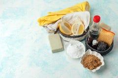 Strumenti di Eco e prodotti di pulizia naturali amichevoli, spazzola del metallo, sapone, senape, soda, limone, oli essenziali, a fotografia stock libera da diritti