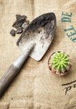 Strumenti di giardinaggio con il cactus sul fondo del sacco Fotografia Stock Libera da Diritti