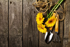 Strumenti di giardinaggio, fiori, corda, spazzole e guanti di giardinaggio sopra Fotografie Stock Libere da Diritti