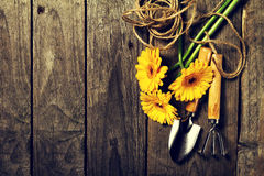 Strumenti di giardinaggio, fiori, corda, spazzole e guanti di giardinaggio sopra Fotografia Stock Libera da Diritti