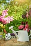 Strumenti di giardinaggio nel giardino Immagine Stock Libera da Diritti