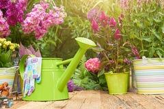 Strumenti di giardinaggio nel giardino Fotografie Stock Libere da Diritti
